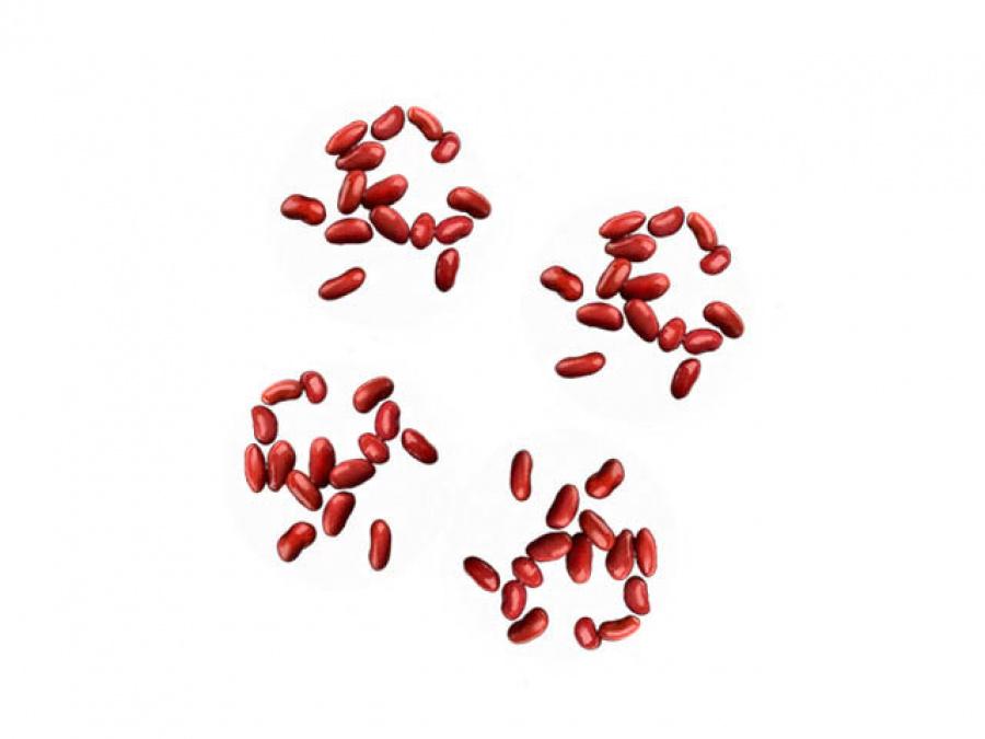 Фасоль красная
